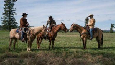 Photo of Heartland Season 10 Episode 1 Review