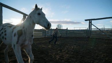 Photo of Heartland Season 10 Episode 18 Review