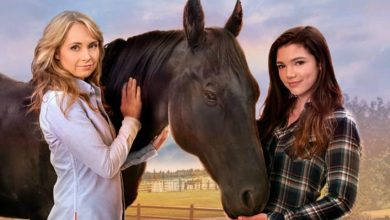 Photo of Heartland season 10 DVD is out now