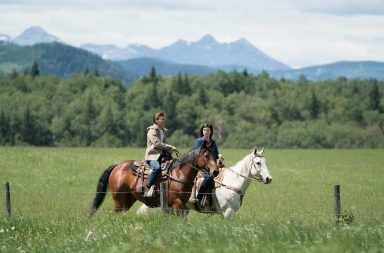 Heartland season 11 episode 6