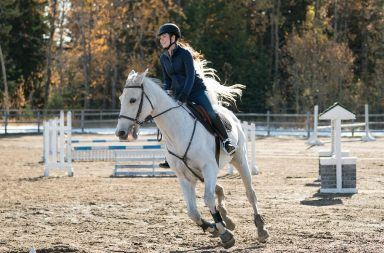 Heartland season 11 episode 13