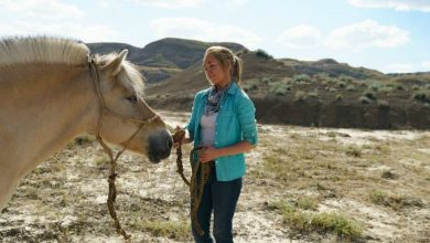 Photo of Heartland Season 11 Episode 10 Review