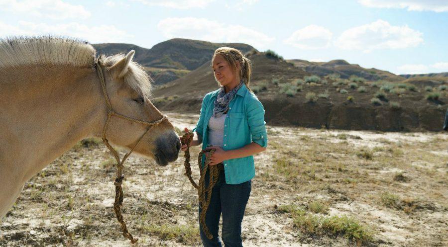 Heartland Season 11 Episode 10 Review Tvshowpilot Com