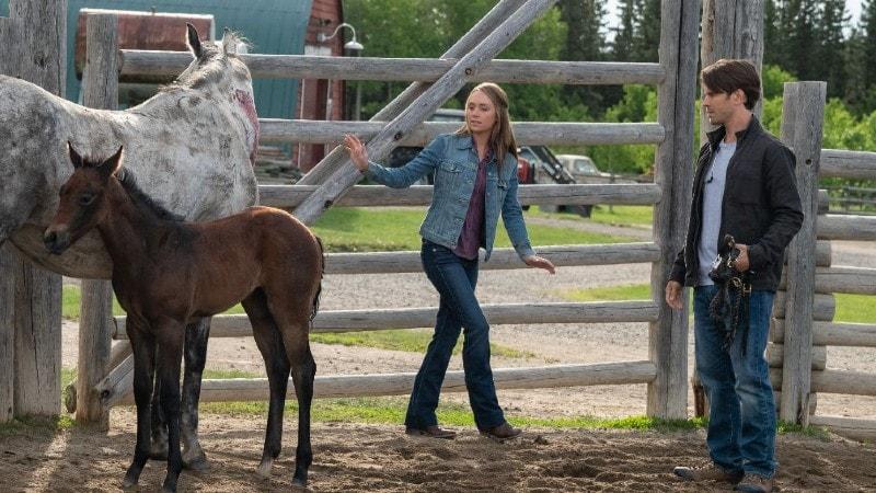 Heartland Season 12 Episode 1 Review | tvshowpilot.com