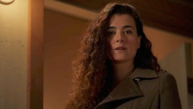 Photo of Besides Ziva Who Else Do We Want to See on NCIS Again?
