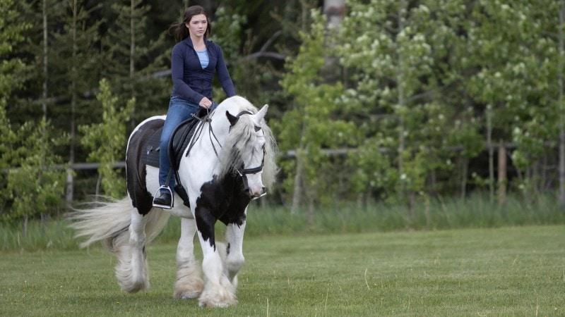 Georgie on Heartland 1305