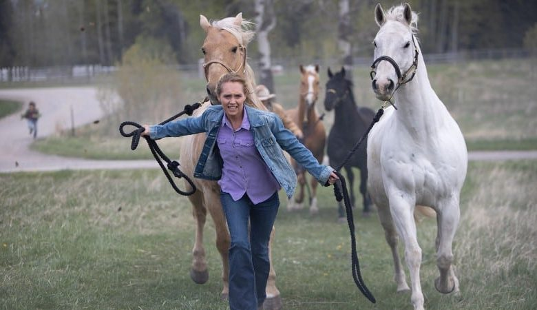 Heartland season 13 episode 4