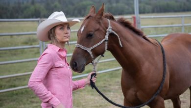 Photo of Heartland Season 13 Episode 10 Review