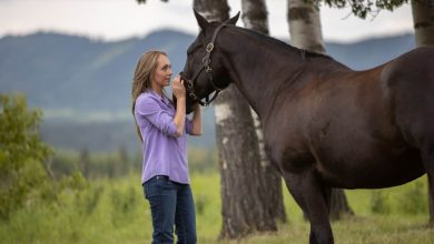 Heartland season 13 episode 7