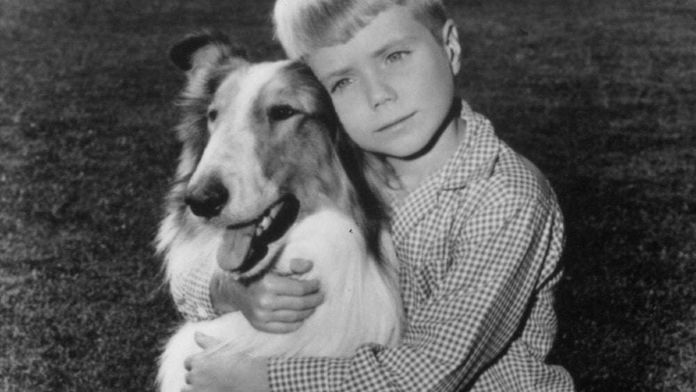 lassie tv show