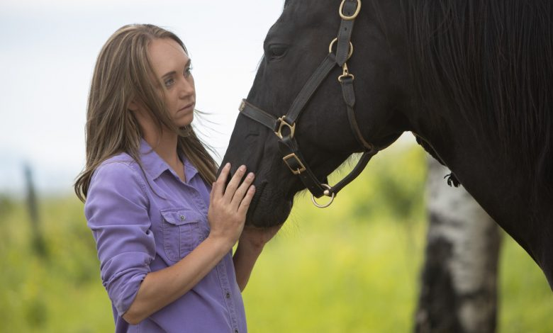 everything we know about Heartland season 14