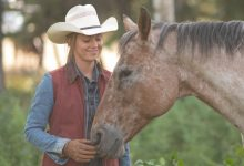 Photo of Heartland Season 14: What Can We Expect?