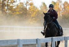 Photo of Heartland Season 14 Episode 3 Review