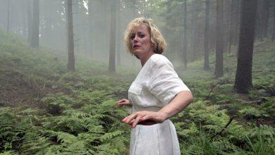 German miniseries Dark Woods review
